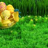 Easter eggs nature still life HD wallpaper