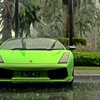Lamborghini cars green palm trees rain HD wallpaper