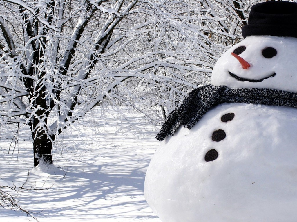 141 Best Snowman pictures images in 2019  Snowman Winter
