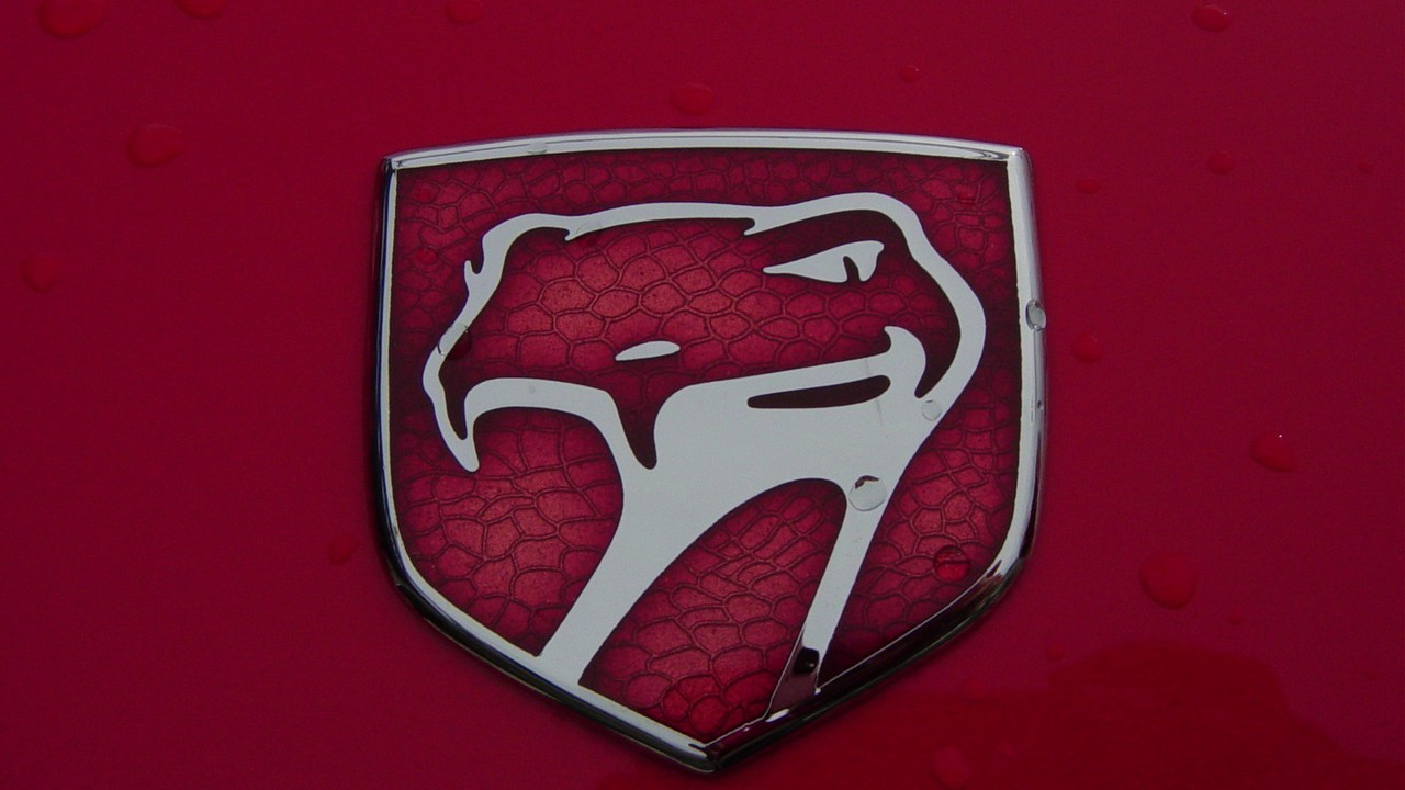 Dodge Viper Logos Wallpaper Allwallpaper In 16041 Pc En