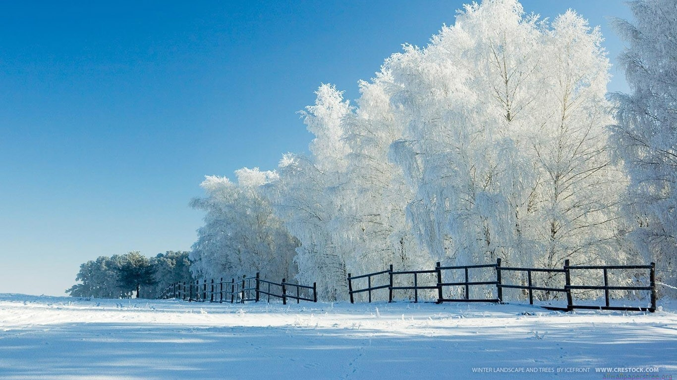 Landschaften Natur Winter Schnee Wallpaper Allwallpaper In 15616