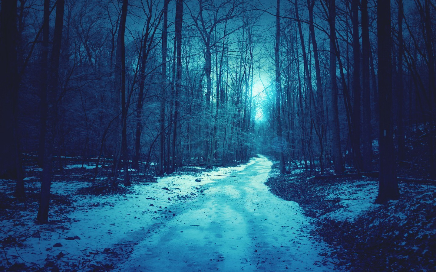 Blue Landscapes Nature Snow Sun Trees Forests Roads