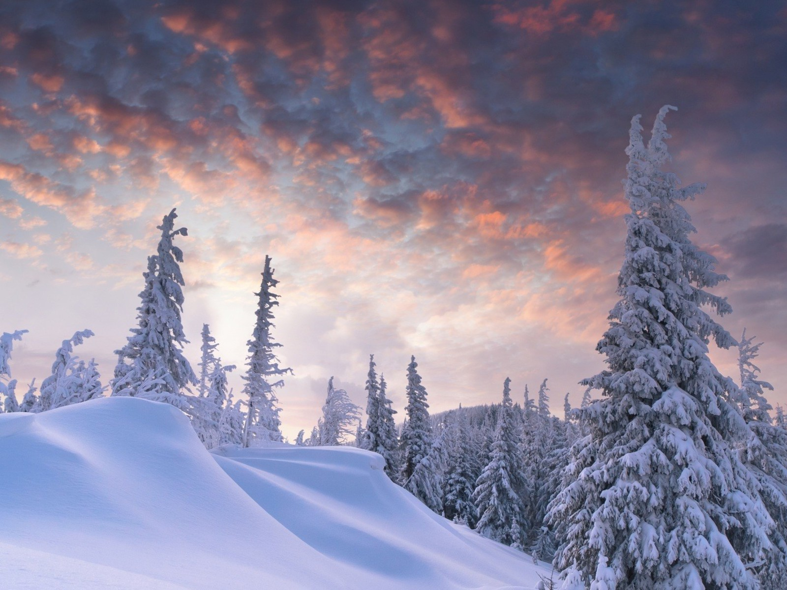 Outstanding Winter Scene Wallpaper