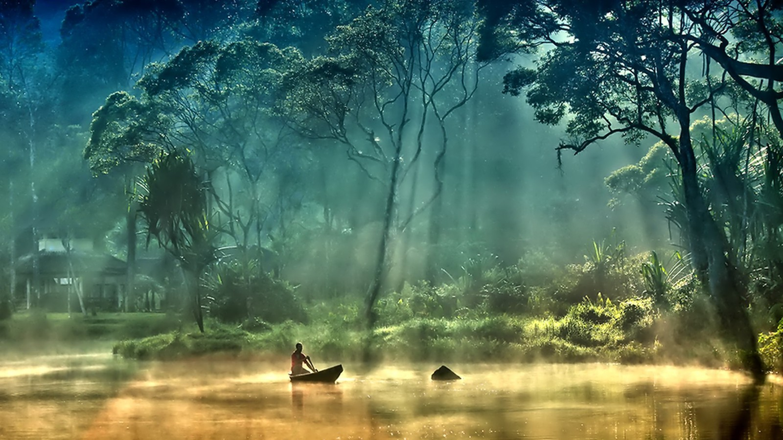 Trees Forest Boats Lakes Foggy Wallpaper Allwallpaper In