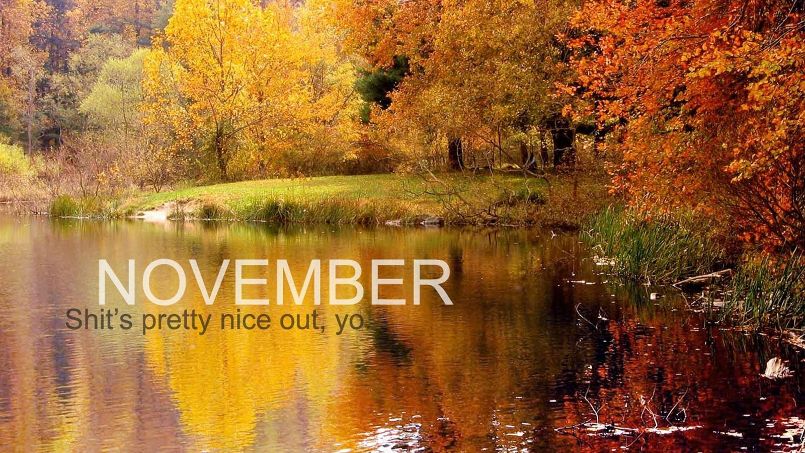 Calendar November Wallpaper Allwallpaper In 16399 Pc En