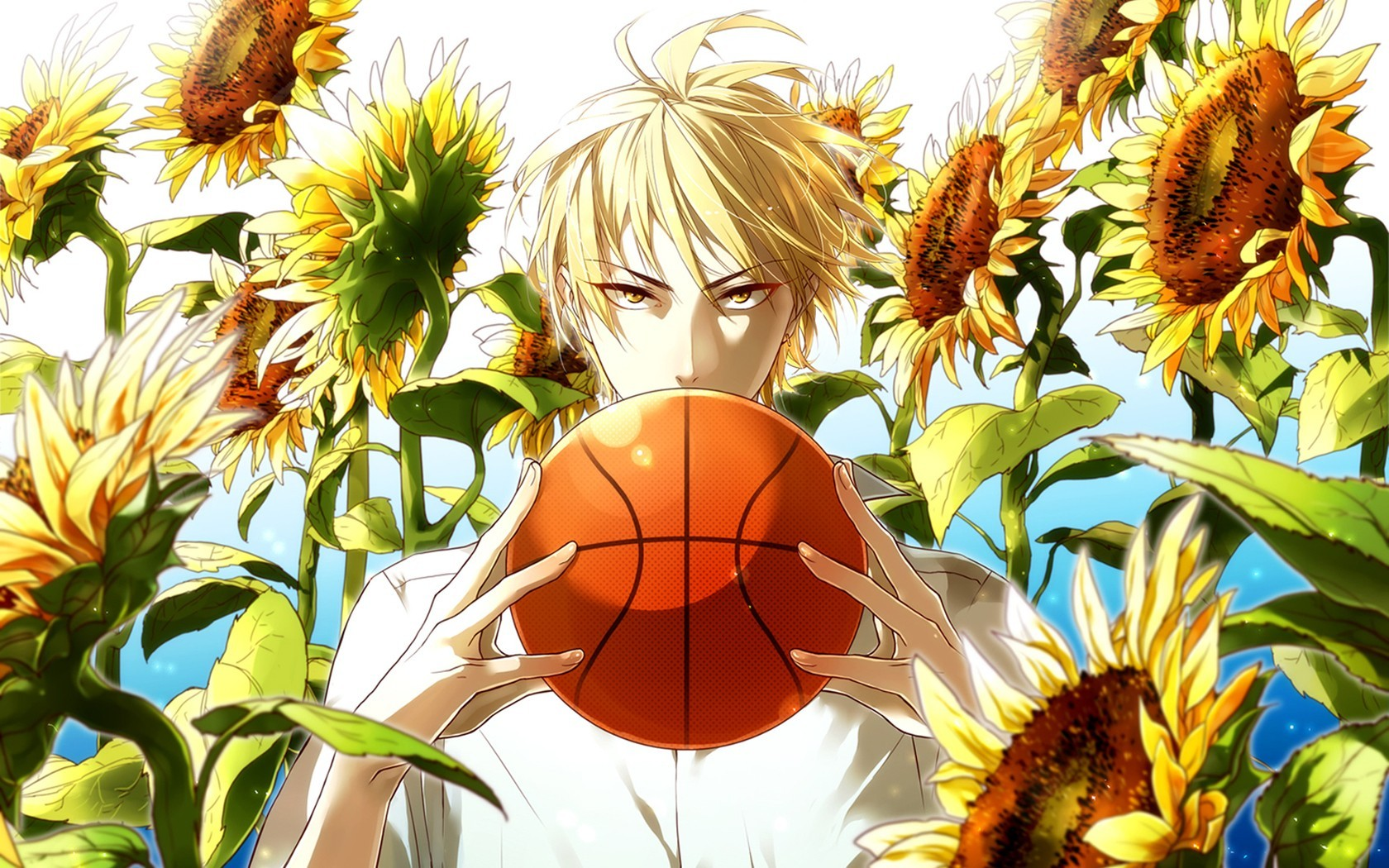 Boys sunflowers kuroko no basket kise ryouta wallpaper hd voltagebd Gallery