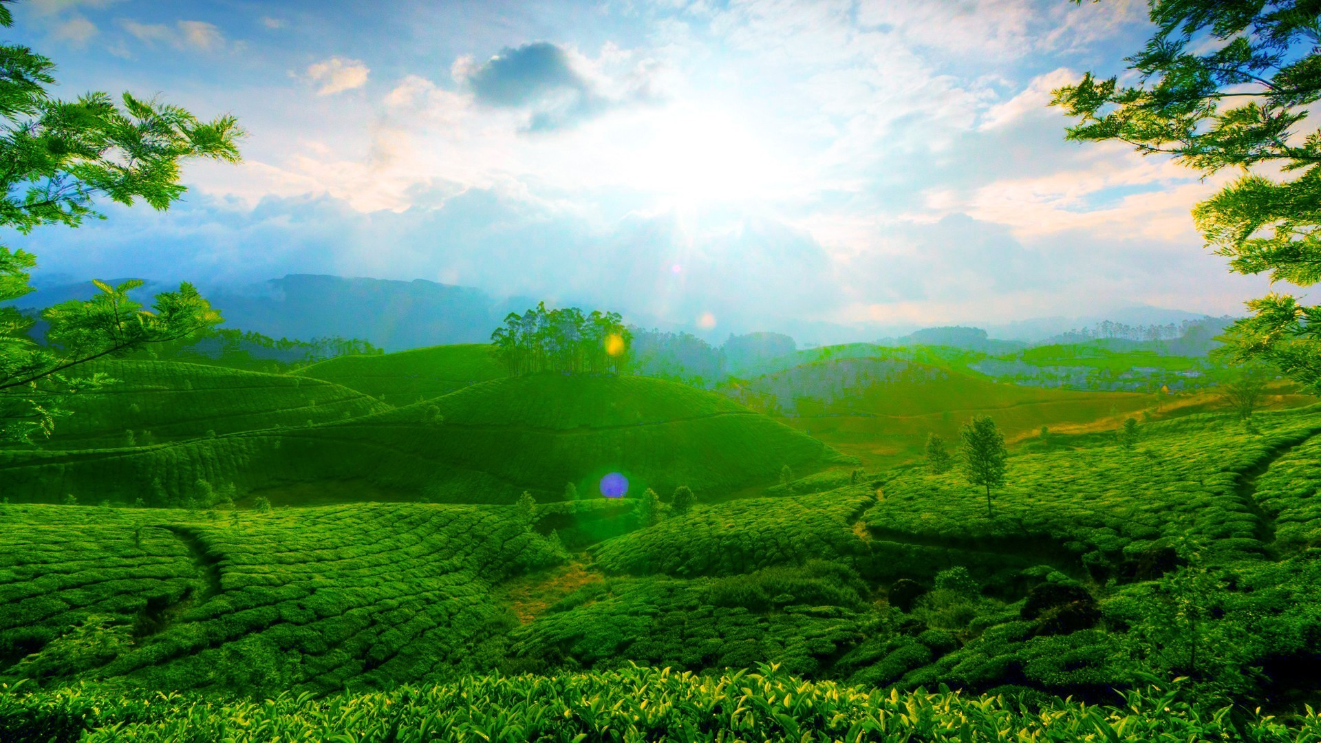 Beautiful green landscape wallpaper | AllWallpaper.in ...