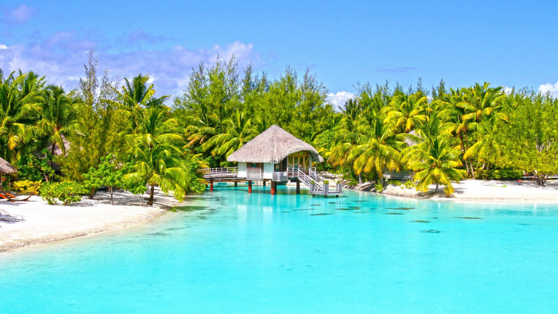 Hd Tropical Island Beach Paradise Wallpapers And Backgrounds: White Sand Beach On Paradise Island Bora Wallpaper