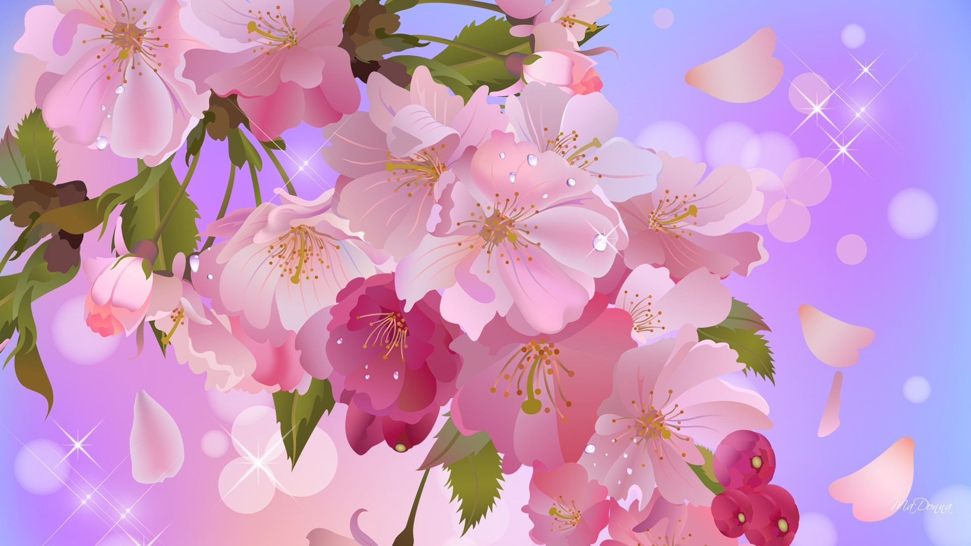 apple blossoms sweet wallpaper | allwallpaper.in #13039 | pc | en