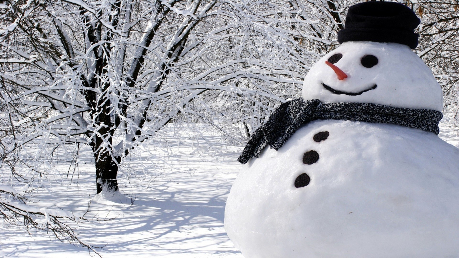 Image result for real snowman