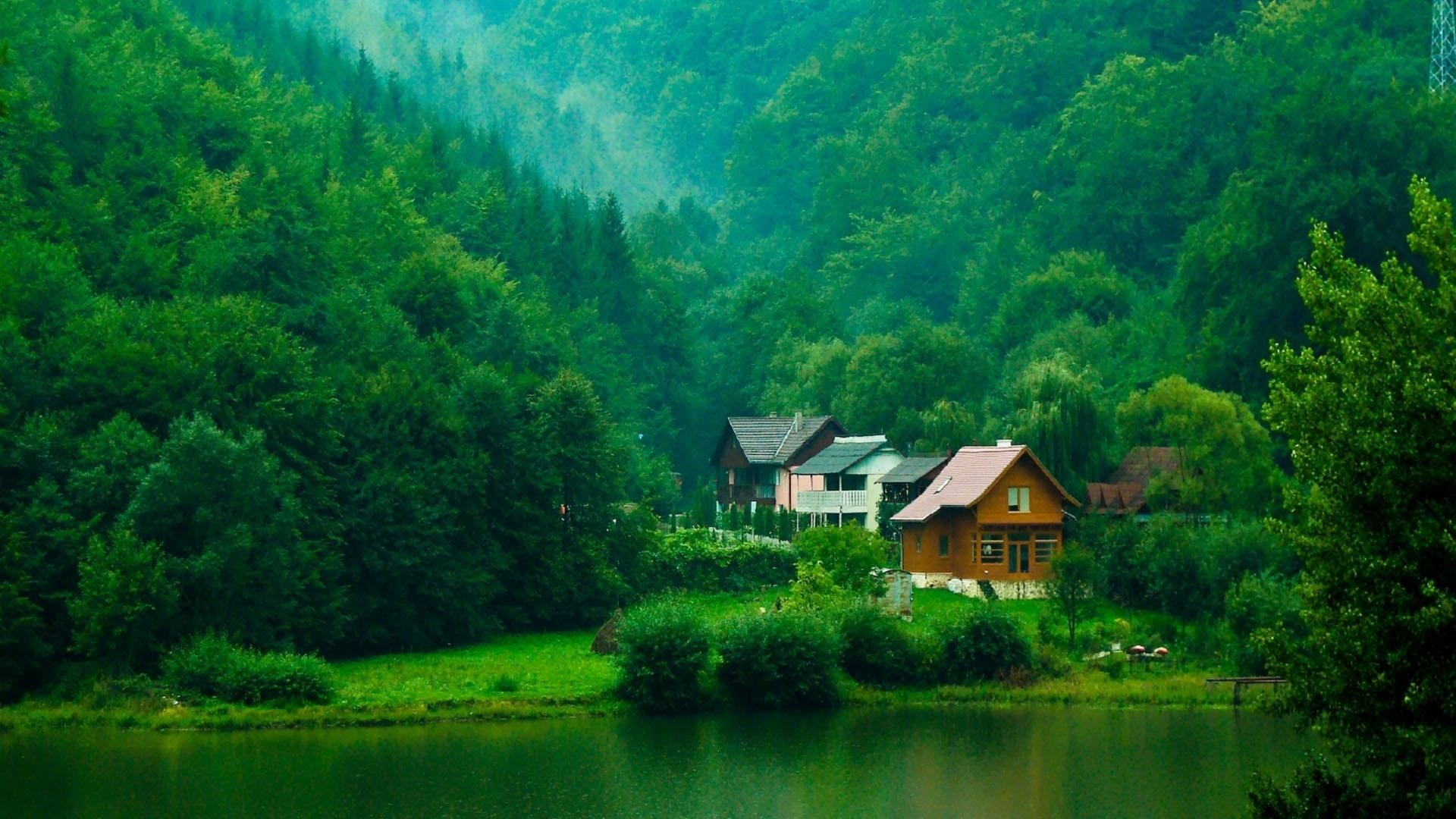Lake houses in the forest wallpaper for Wallpaper with houses on it
