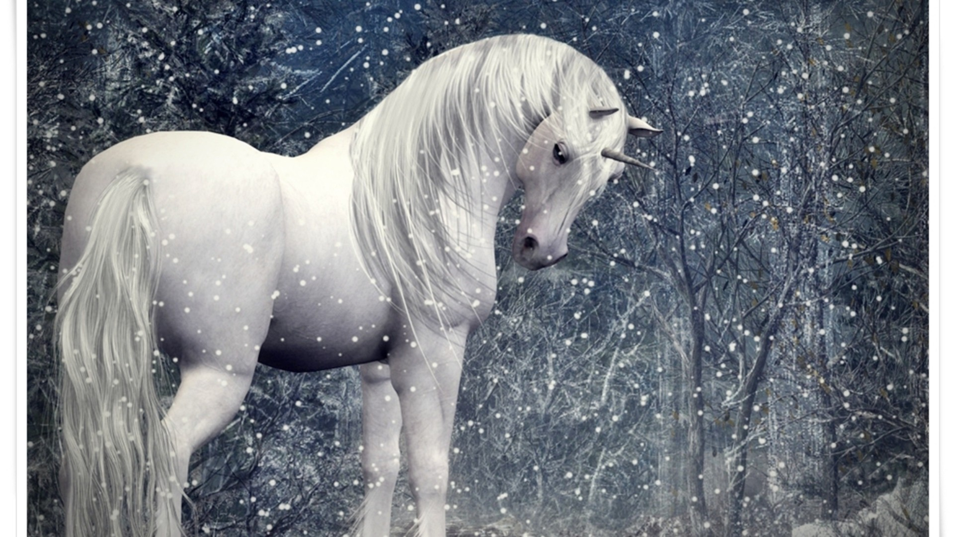 Unicorn in a snowy forest wallpaper allwallpaper 15624 pc en unicorn in a snowy forest wallpaper voltagebd Images