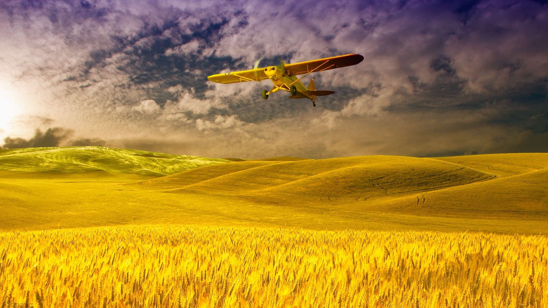 plane over a field of grain wallpaper - Grain Wallpaper