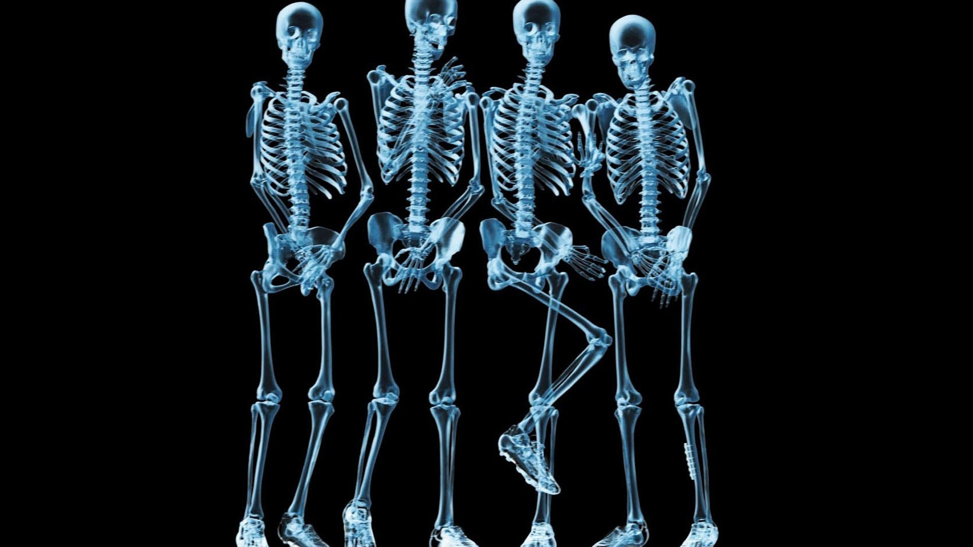 X ray skeleton wallpaper