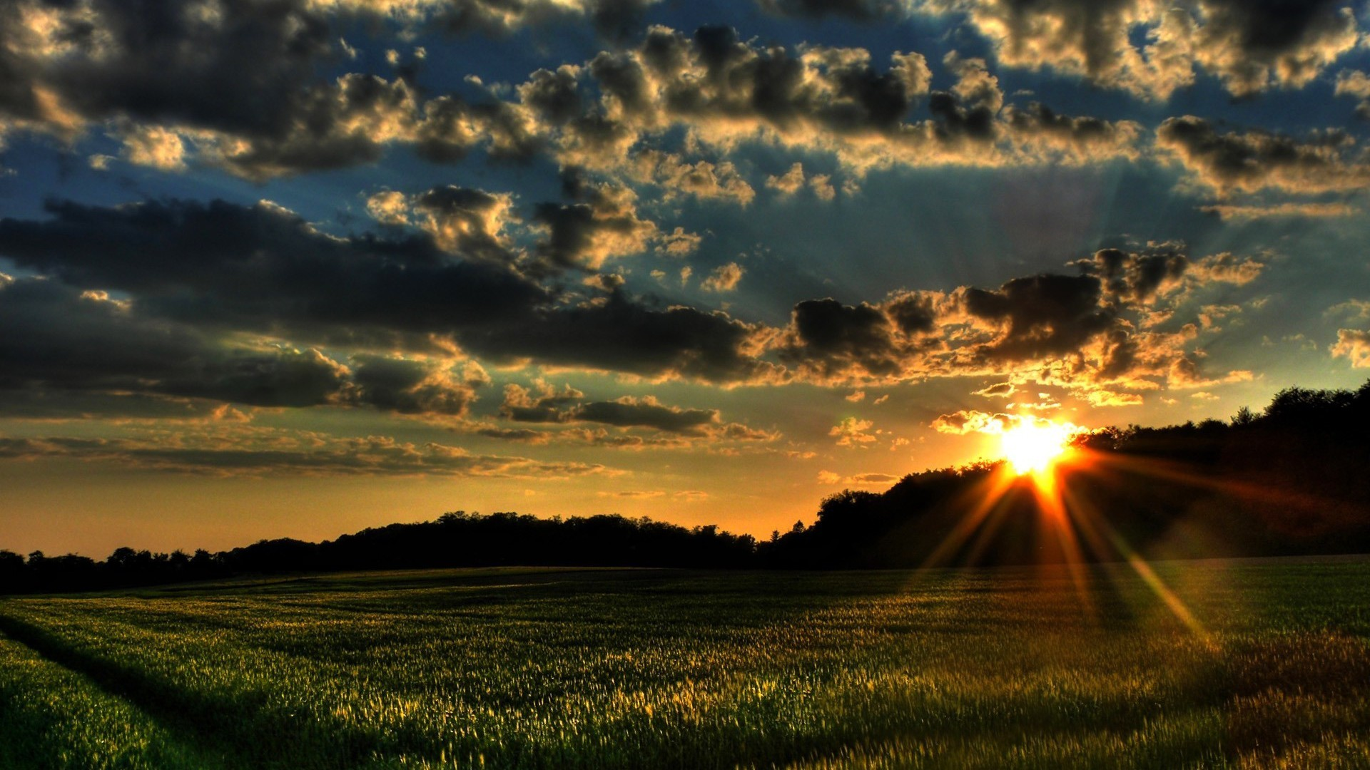 morning nature spring wallpaper | allwallpaper.in #3900 | pc | en