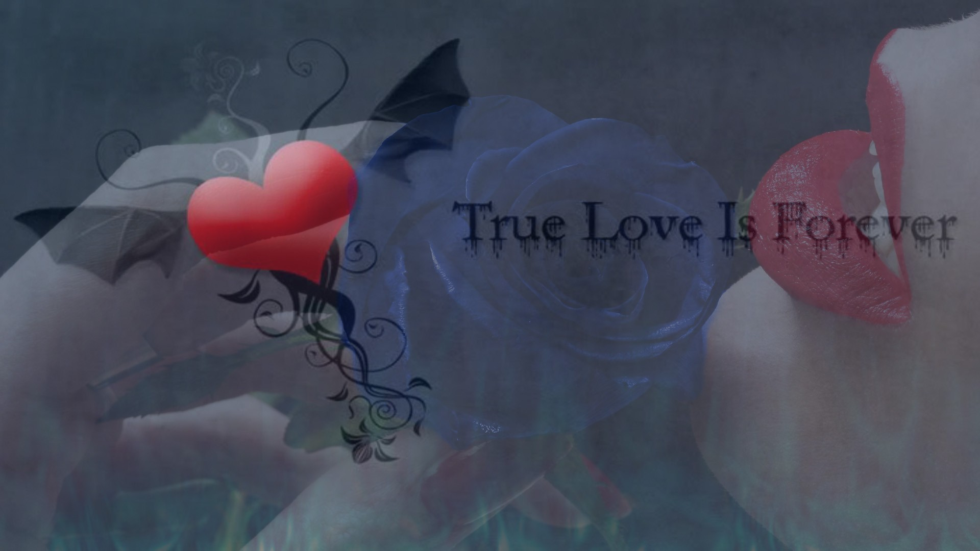 Love Forever Wallpapers : True love is forever wallpaper AllWallpaper.in #5616 ...