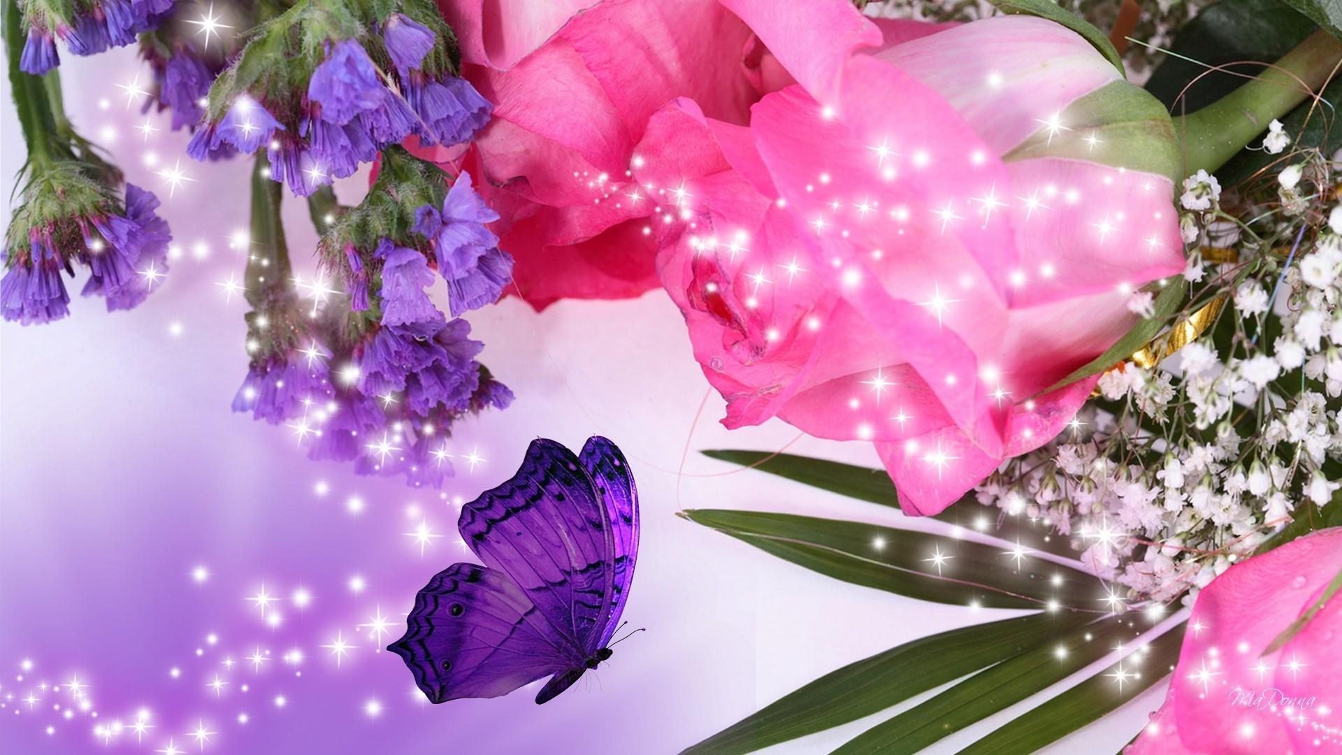 Pink Roses And Purple Flowers Wallpaper