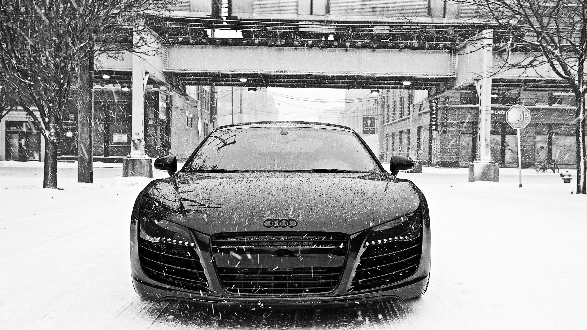 Cars Audi Roads R8 White V10 Wallpaper Allwallpaper In: Winter Snow Cars Audi R8 Front View Wallpaper
