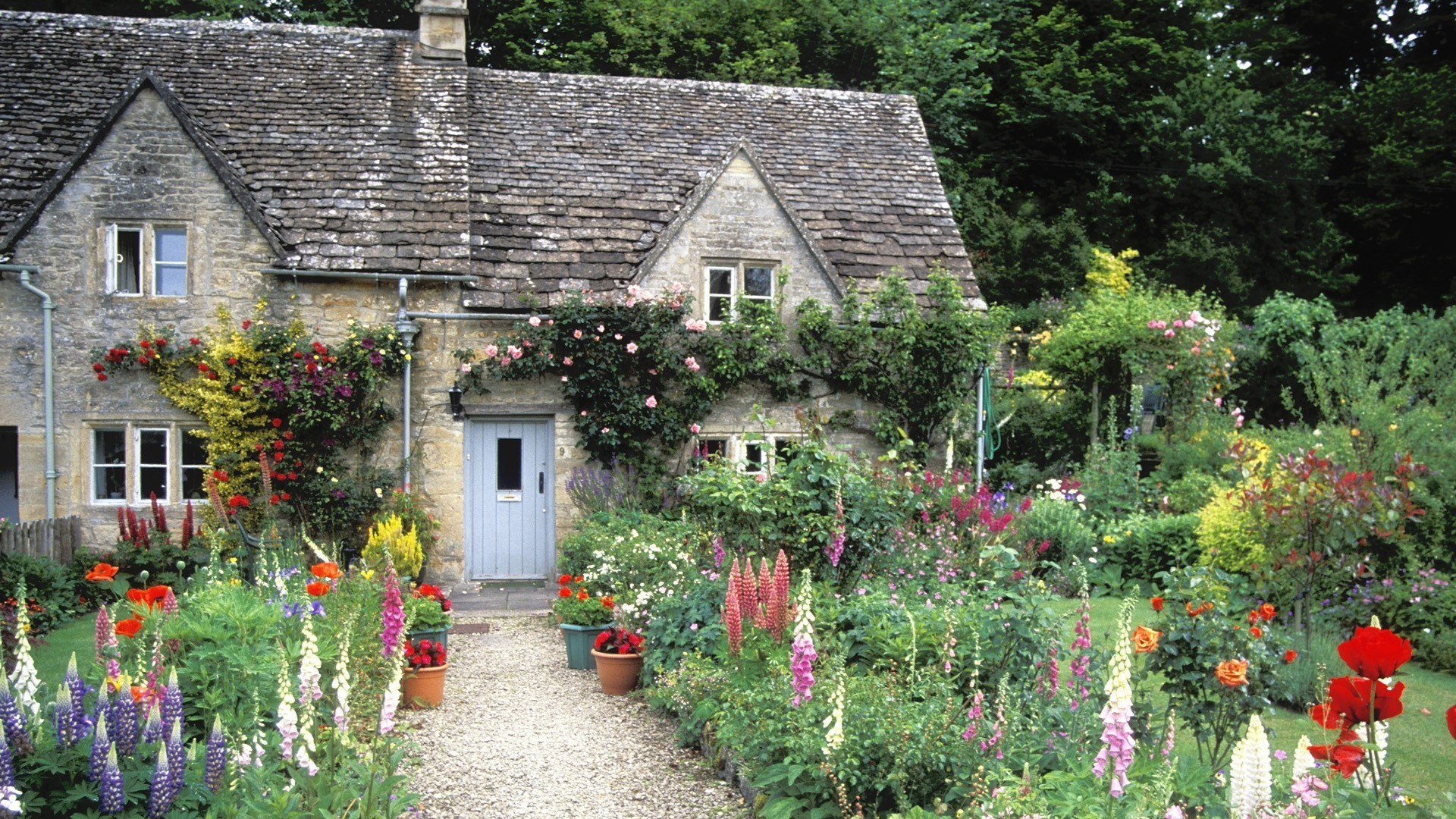 England cottage garden wallpaper 8115 for Garden design york uk