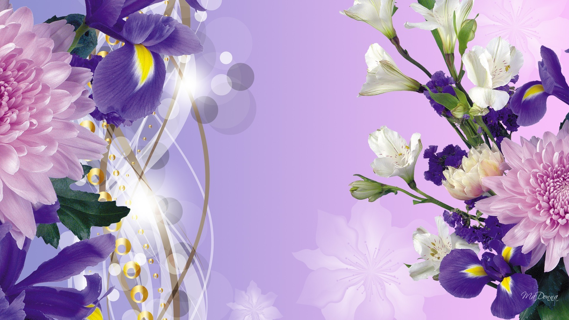 Purple Iris Spring Wallpaper Allwallpaper In 9058 Pc En