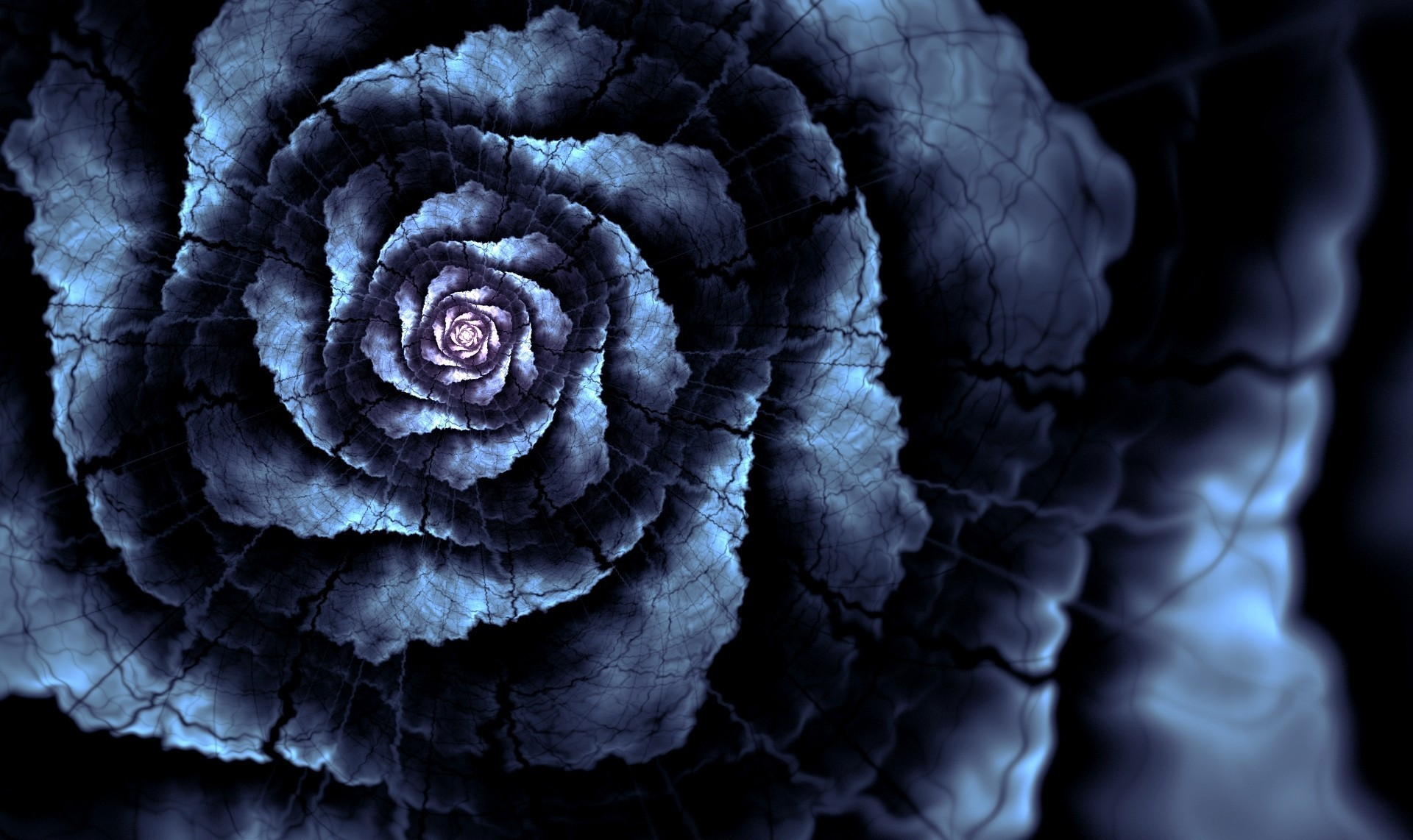 blue rose andreea wallpaper | allwallpaper.in #2878 | pc | en