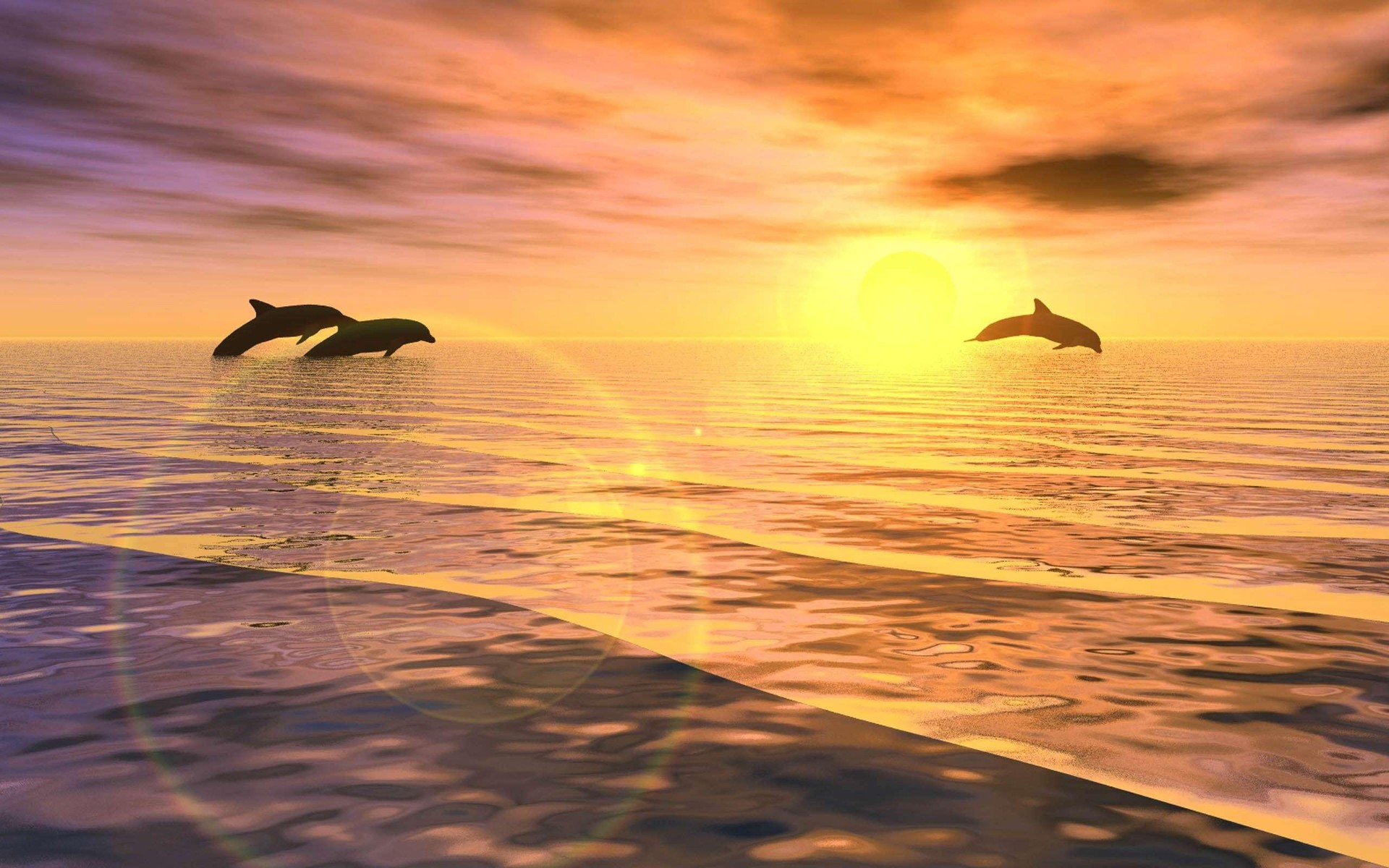 Jumping dolphins at sunset wallpaper | AllWallpaper.in ...