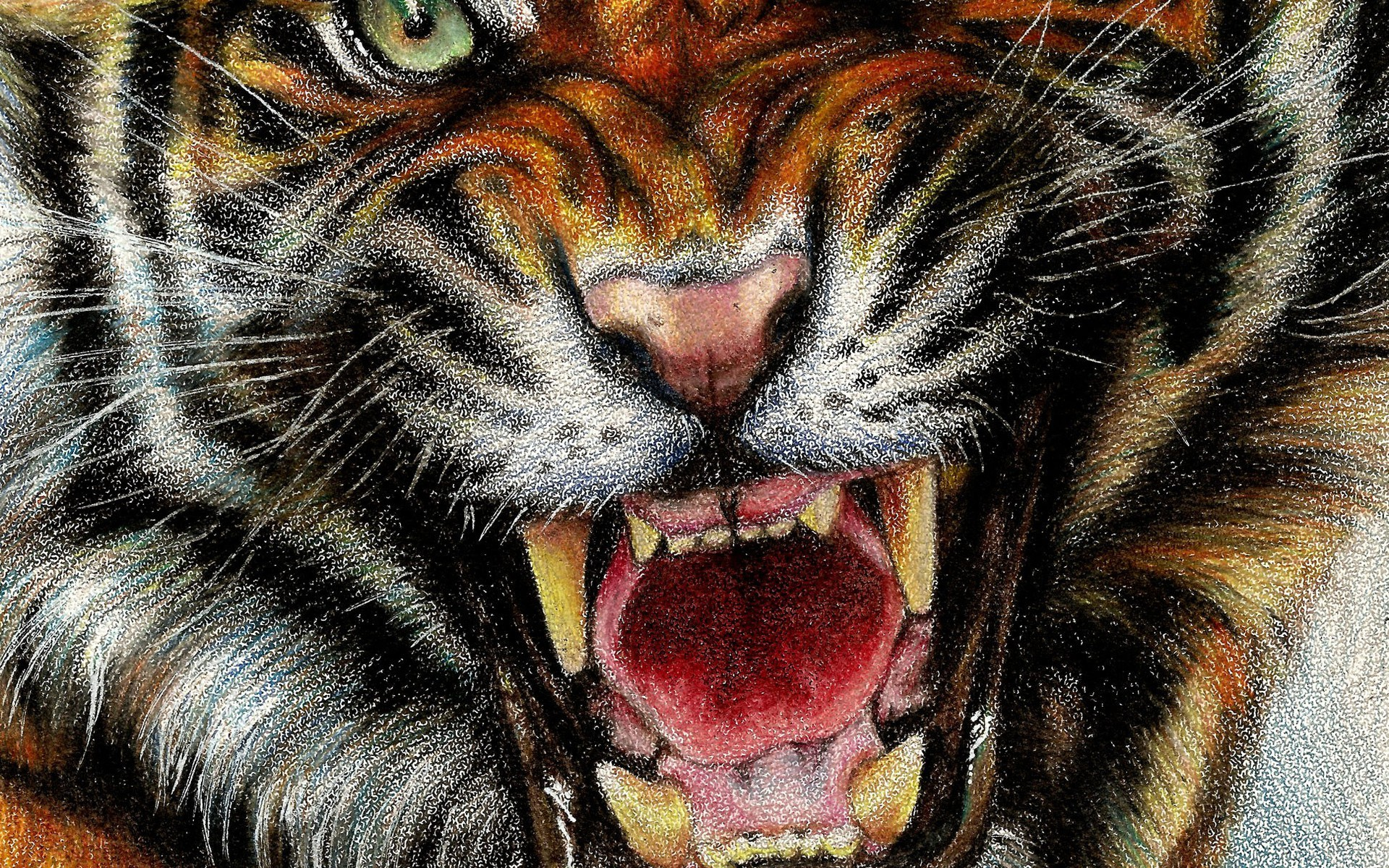 Animals digital art drawings paintings tigers wallpaper wallpaper resolutions thecheapjerseys Images