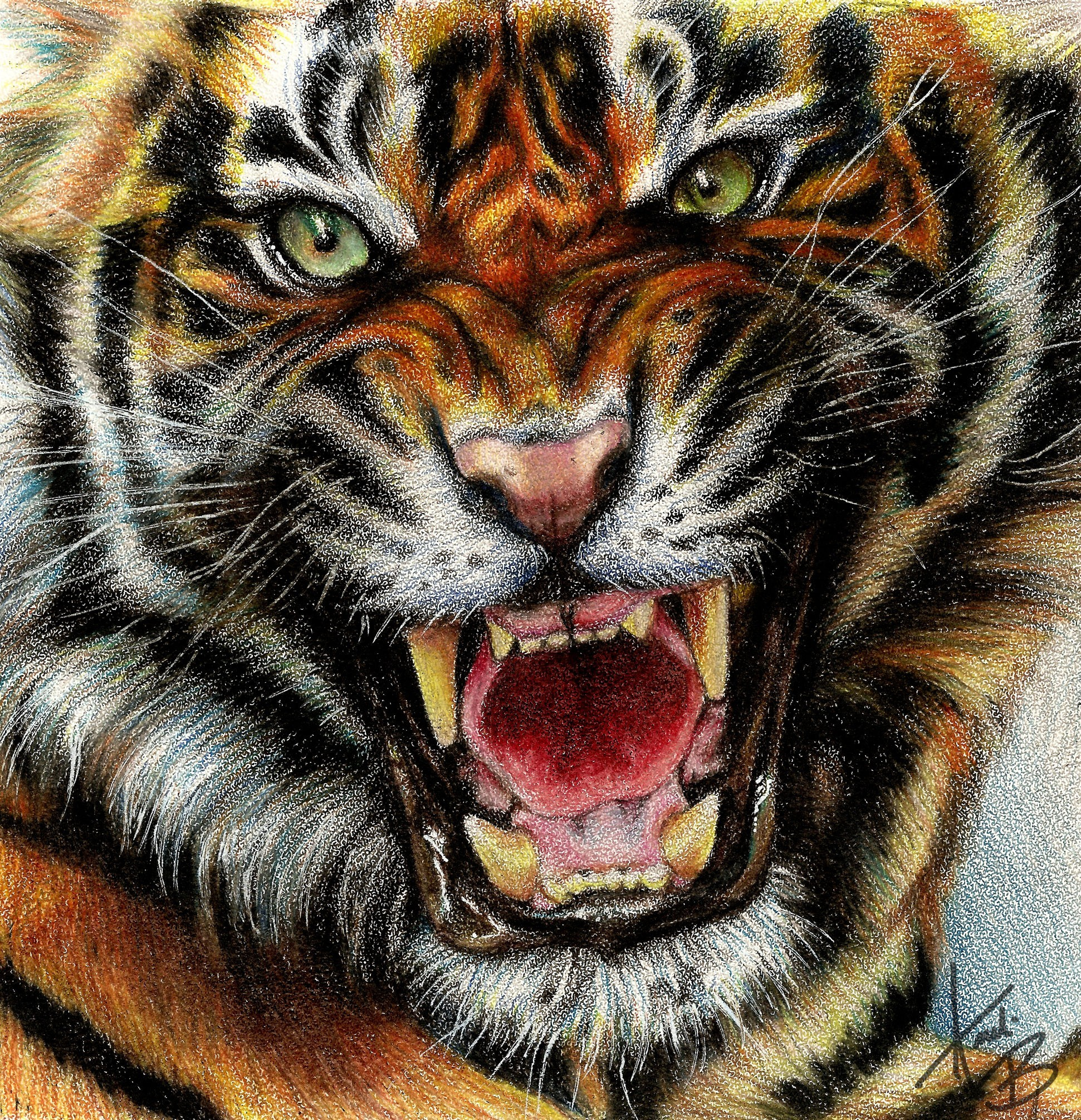 Animals digital art drawings paintings tigers wallpaper animals digital art drawings paintings tigers wallpaper altavistaventures Choice Image