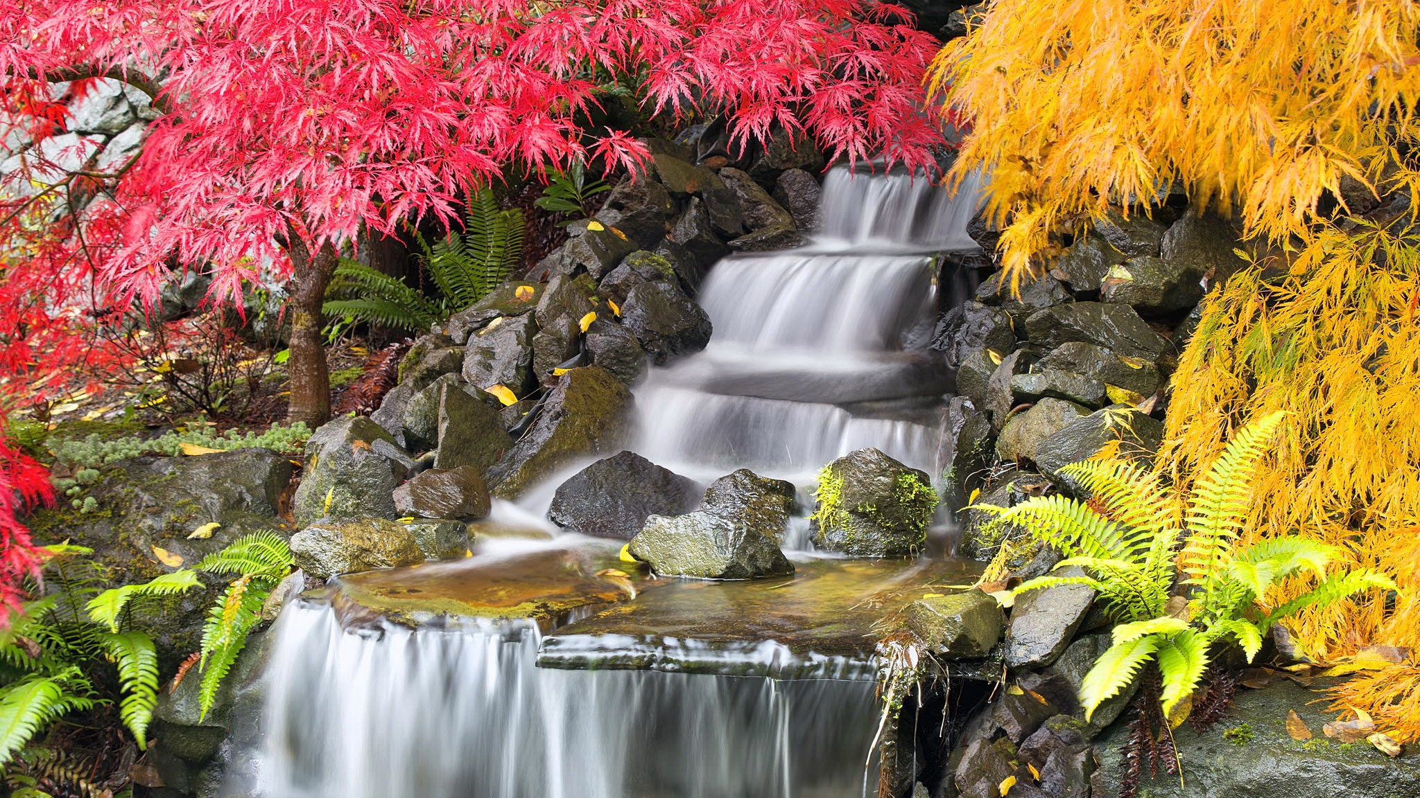 Hinterhof wasserfall wallpaper 14620 for Cascadas para jardin fotos