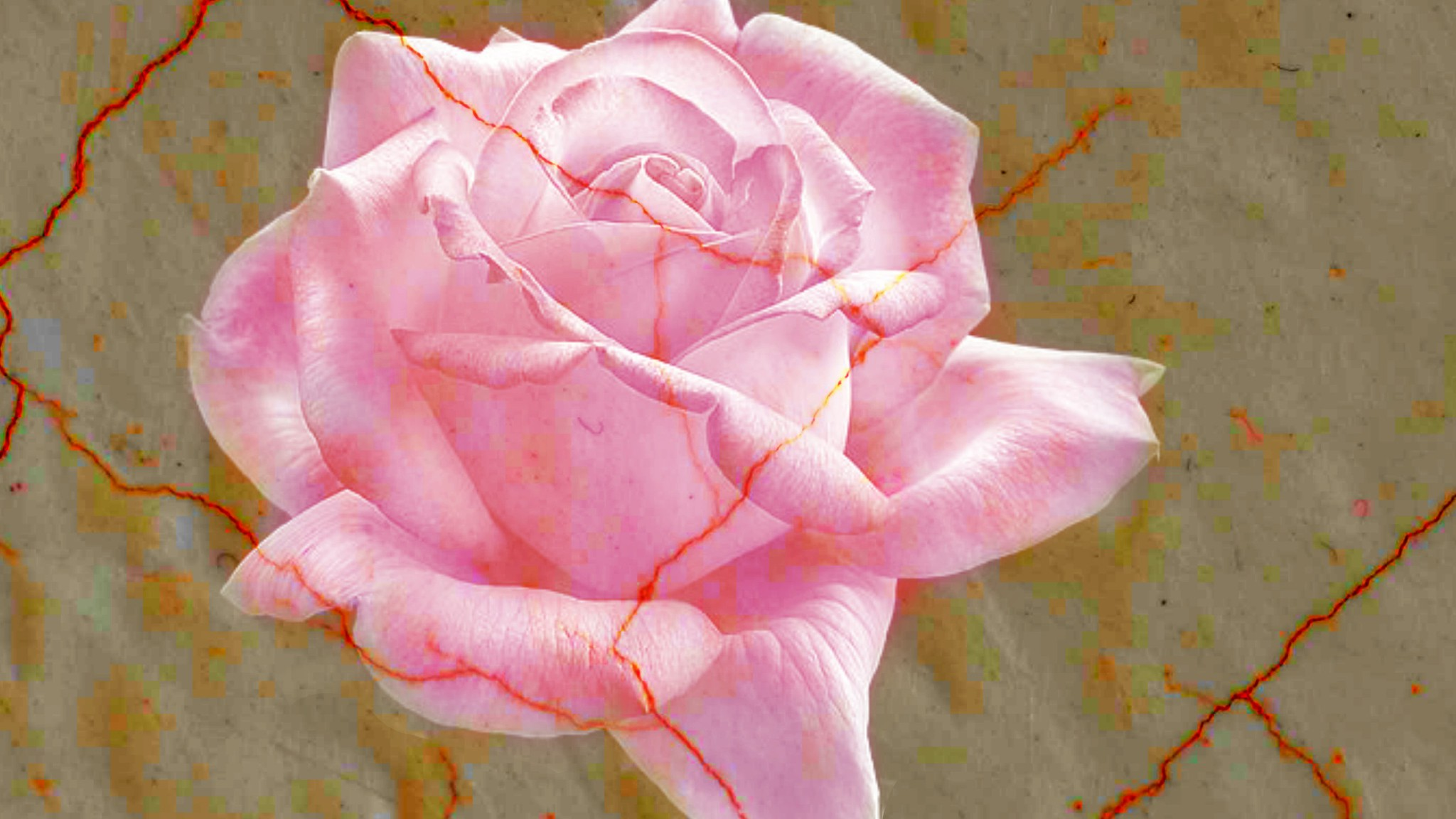 Pink Marble Rose For My Friend Luna Wallpaper