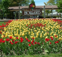 Cityscapes tulips holland HD wallpaper