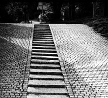 Black and white nature stairways stairs HD wallpaper