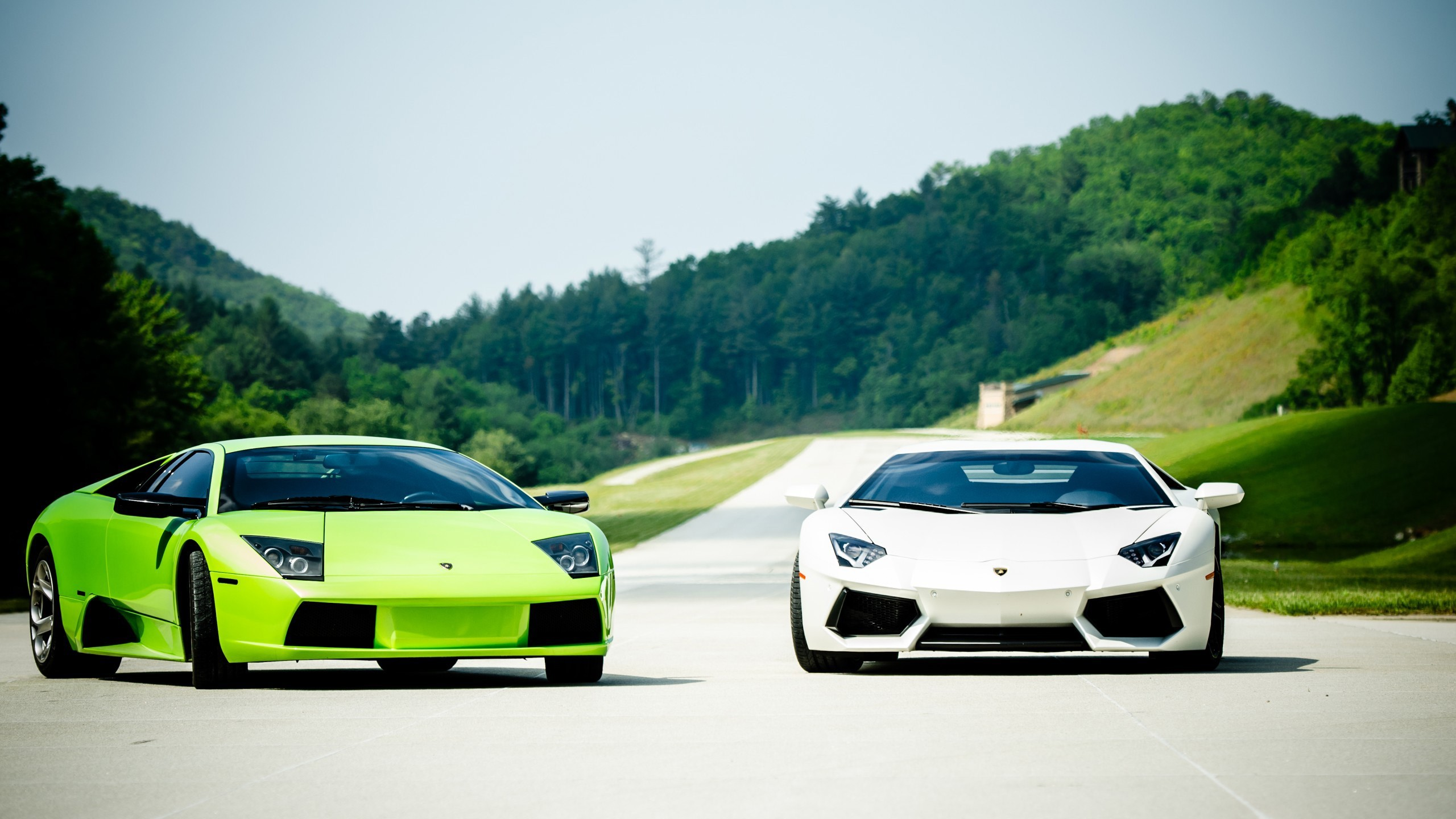 Cars Lamborghini Murcielago Aventador Wallpaper Allwallpaper In