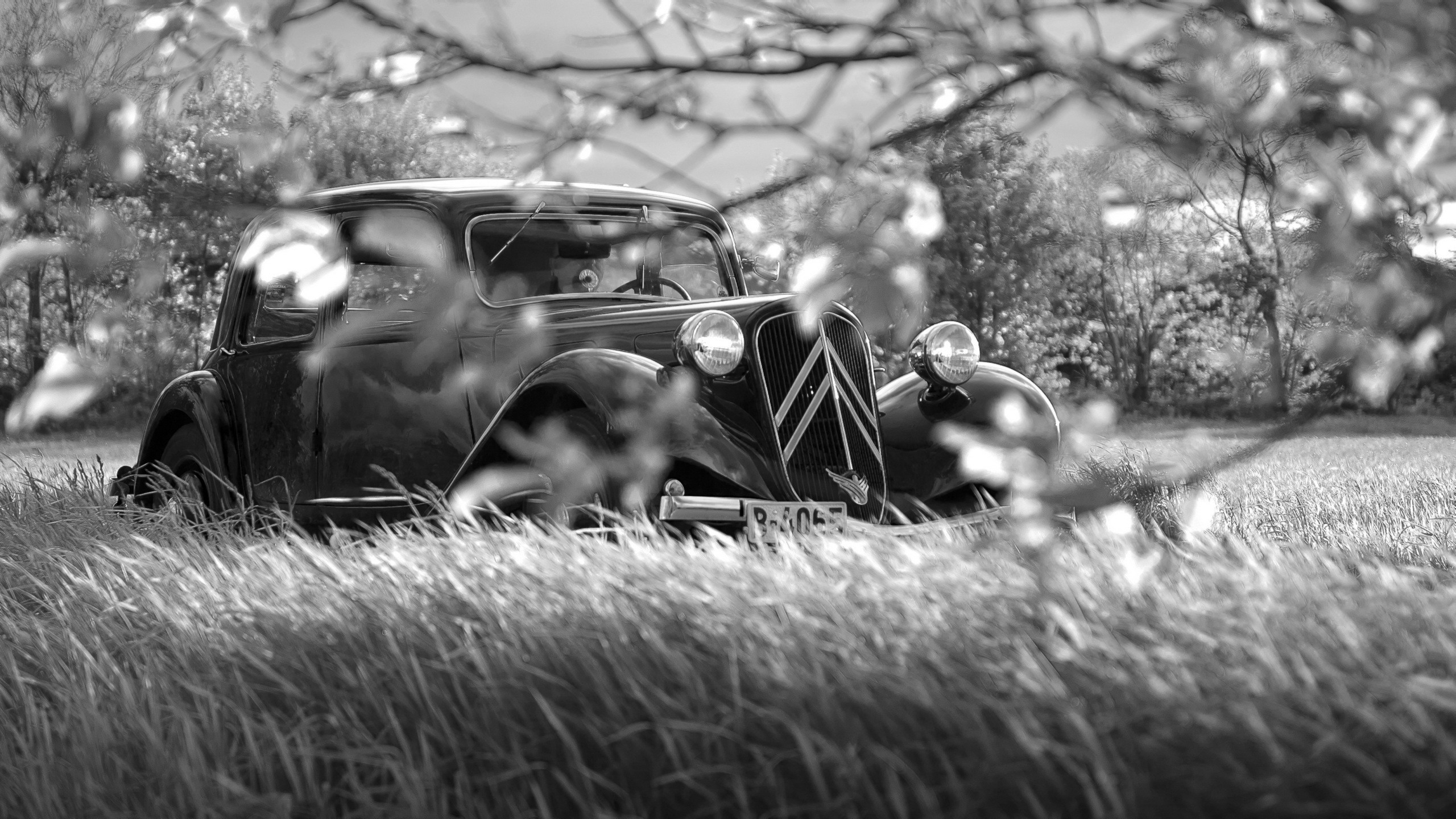 Citroãn artistic black and white classic cars machine wallpaper