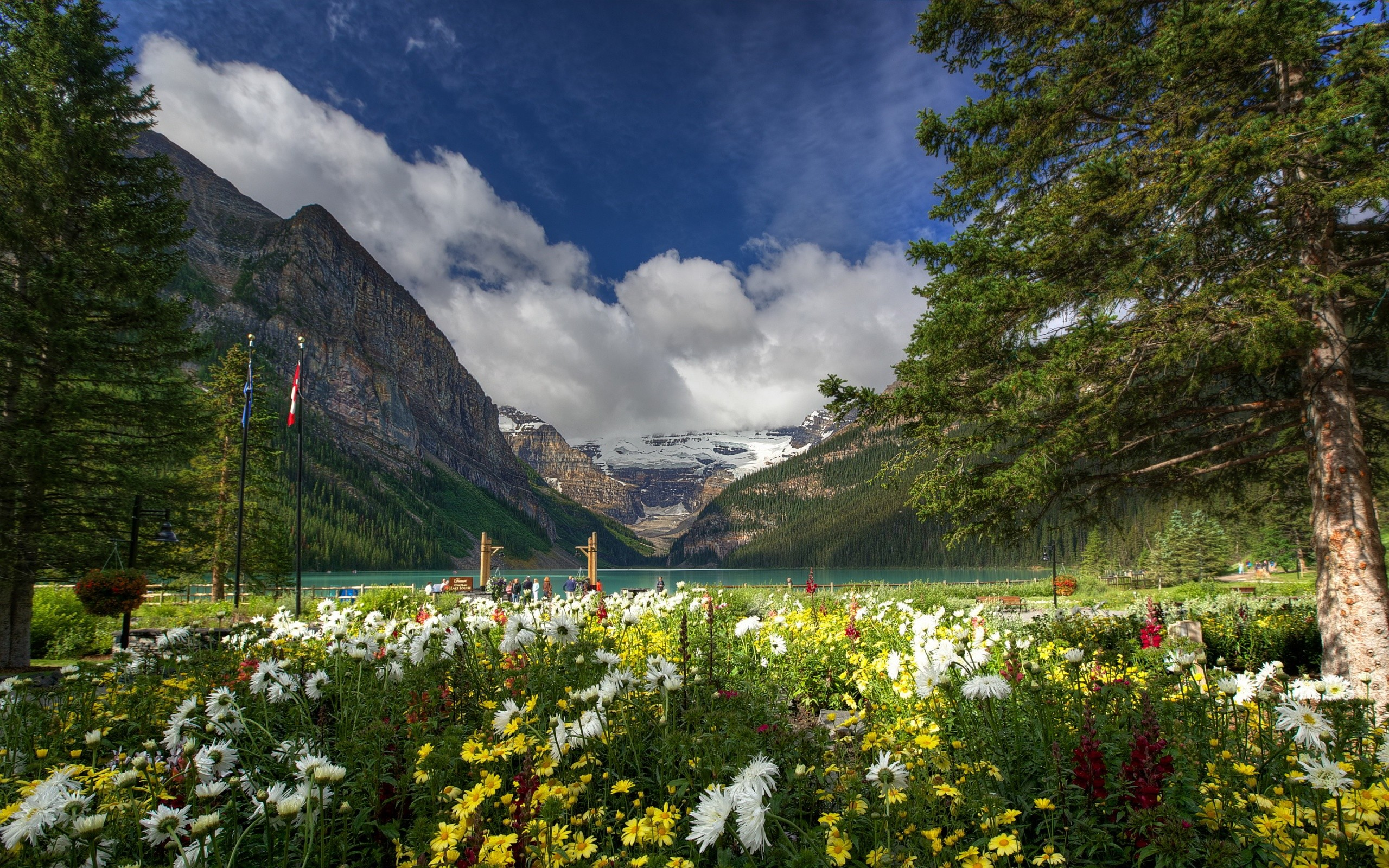 Lake louise banff national park wallpaper