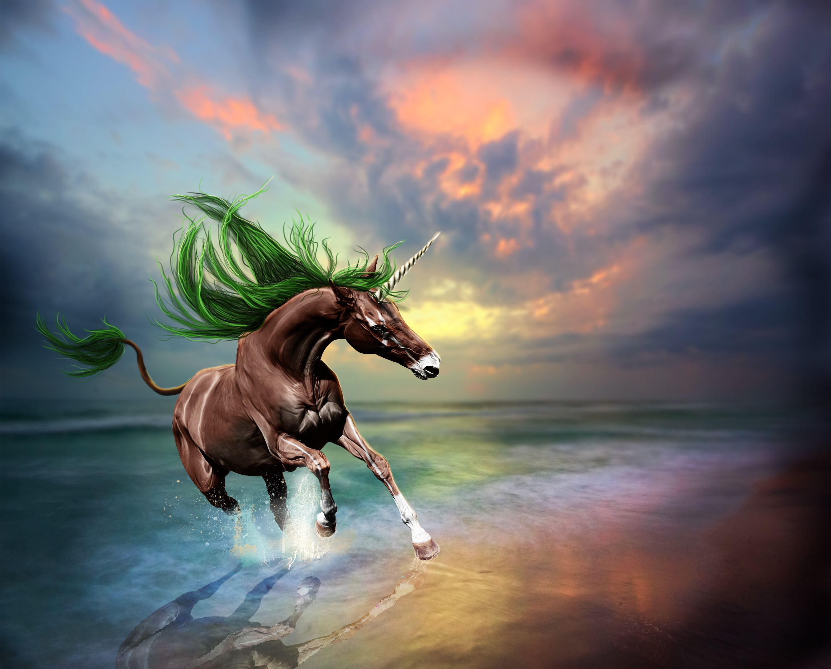 magic unicorns animated wallpaper - photo #38