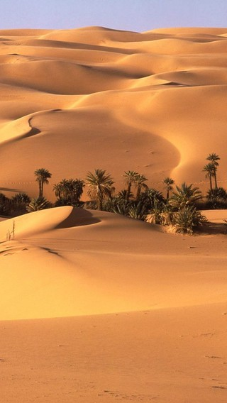 Landscapes nature desert oasis wallpaper | AllWallpaper.in ... Oasis Landscape Wallpaper