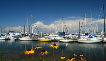 Sailboats in the marina HD wallpaper