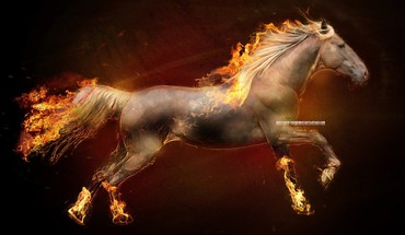 Fire horses ponyta creative HD wallpaper