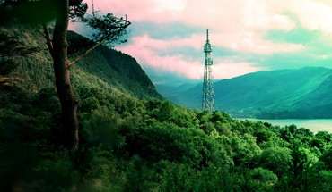 Bonobo forests jungle nature radio tower HD wallpaper