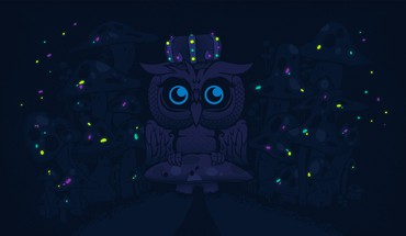 Dark night mushrooms glowing owls artwork desktopography HD wallpaper