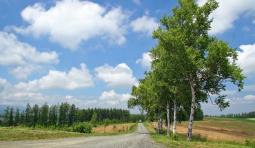 Rural road in hokkaido japan HD wallpaper