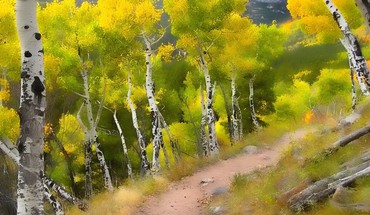 Trees yellow HD wallpaper