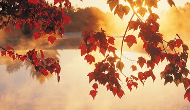 Nature automne  HD wallpaper