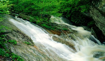 Landscapes forest national wilson waterfalls creek north carolina HD wallpaper