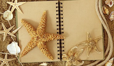Starfish notebook  HD wallpaper