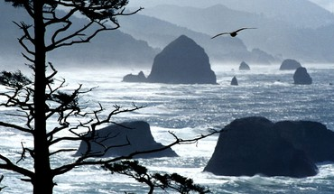 Oregon coast point HD wallpaper