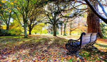 Bench at the park HD wallpaper