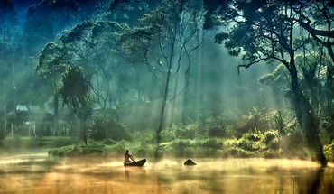 Trees forest boats lakes foggy HD wallpaper