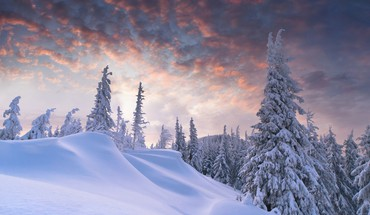 Winter forest hills skies HD wallpaper